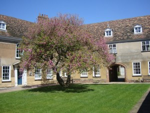 Thoresby College